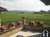 Voor wijnliefhebber met kelder en uitzicht op de wijngaarden Ref # JG5195V