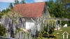 Mooiste vakantiepark van frankrijk met een vrijstaand huis type Espace 80.5m2 met een lekkere tuin van 380 m2 gelegen in een luxe park Ref # MP2145
