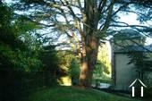 19e eeuws kasteeltje met gîtes en chambres d'hotes Ref # RP5062M foto 5 De cederboom