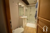 Shower room with toilet at main house