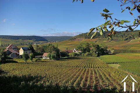 Bourgogne informatie