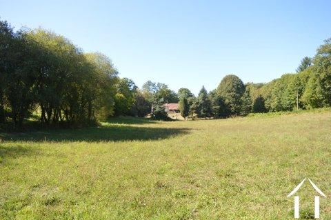 Zonder buren met 2,3 hectare tuinkavel Ref # Li588