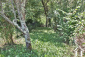 Dorps huis 80m2 met tuin Ref # MP9031 foto 20