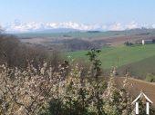 boerderij met gite en 2 ha land, prachtig uitzicht op de Pyreneeën. Ref # MP9050 foto 2